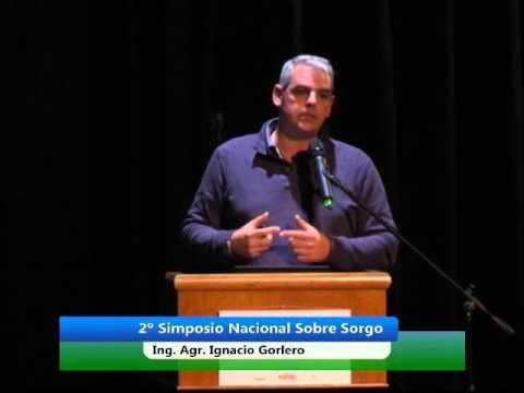 Simposio Nacional de Sorgo 2015 - Ing. Agr. Ignacio Gorlero